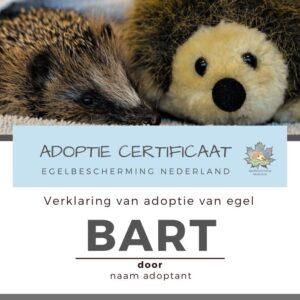 Adoptie met digitaal certificaat