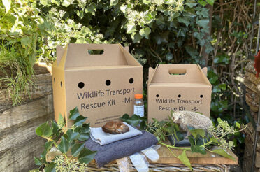 Almere Dagblad – Overhandiging Wildlife Transport Rescue Kit aan wethouder van Garderen